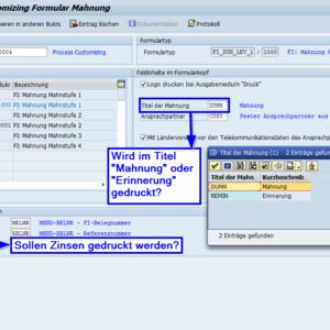 Customizing SAP Formular Mahnung