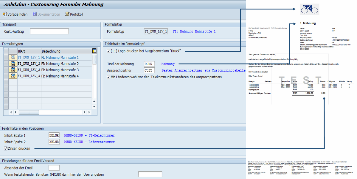 Customizing Sap Formular Mahnung Solidforms