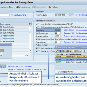 Customizing SAP Formular Rechnungsliste