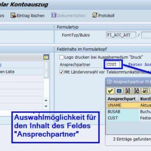 Customizing SAP Formular Kontoauszug