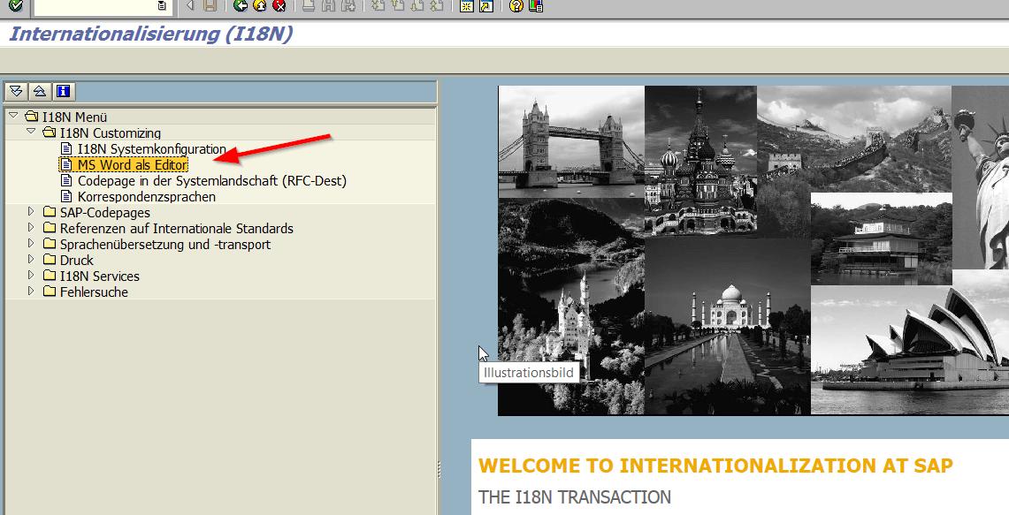 SAP I18N
