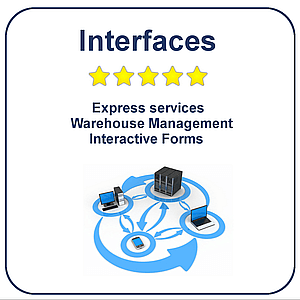 SAP interfaces